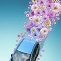 Au Japon, la marque aux trois ellipses favorise les véhicules hybrides et les automobiles électriques.