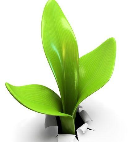 Un programme de livraisons neutres en carbone àl'échelle européenne pour Exapaq