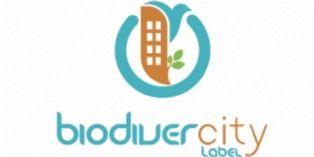 Biodivercity: le premier label international sur la biodiversité dans l'immobilier