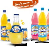 Orangina Schweppes restructure son SI vers le Cloud