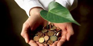Un logiciel pour conjuguer achats responsables et économies