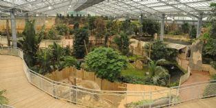 Et si vous organisiez un séminaire dans une serre tropicale ?