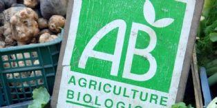 Paris : 50% d'aliments bio ou labellisés dans les crèches, d'ici à 2020