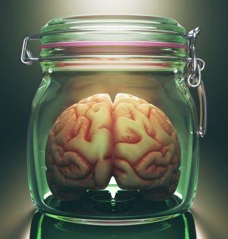 Whyers vend 'du jus de cerveau de startupers' aux grands comptes