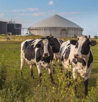 Lactalis et les organisations de producteurs s'accordent sur le prix du lait