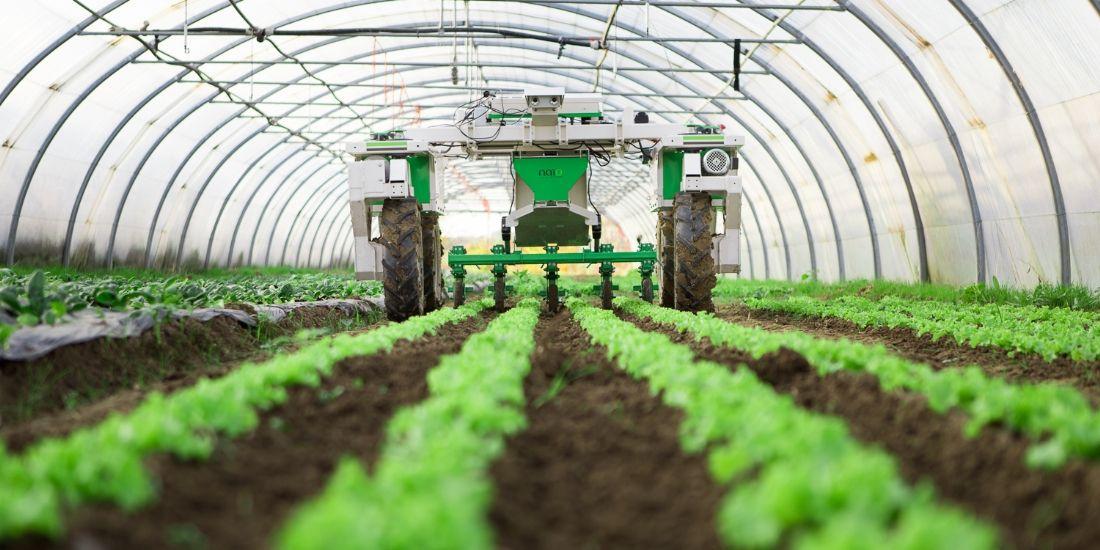 Dino, un robot aux petits soins pour les légumes