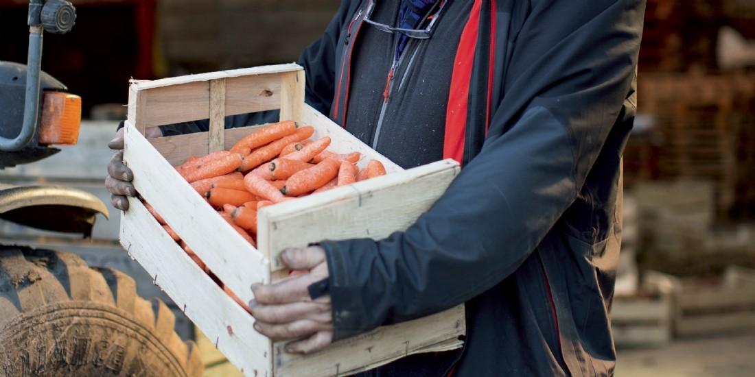 Ouifield : une plateforme achats pour le monde coopératif agricole