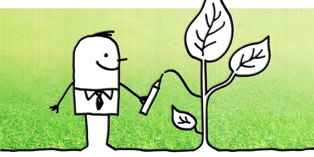 Carrefour lance un projet de financement participatif de transition agricole