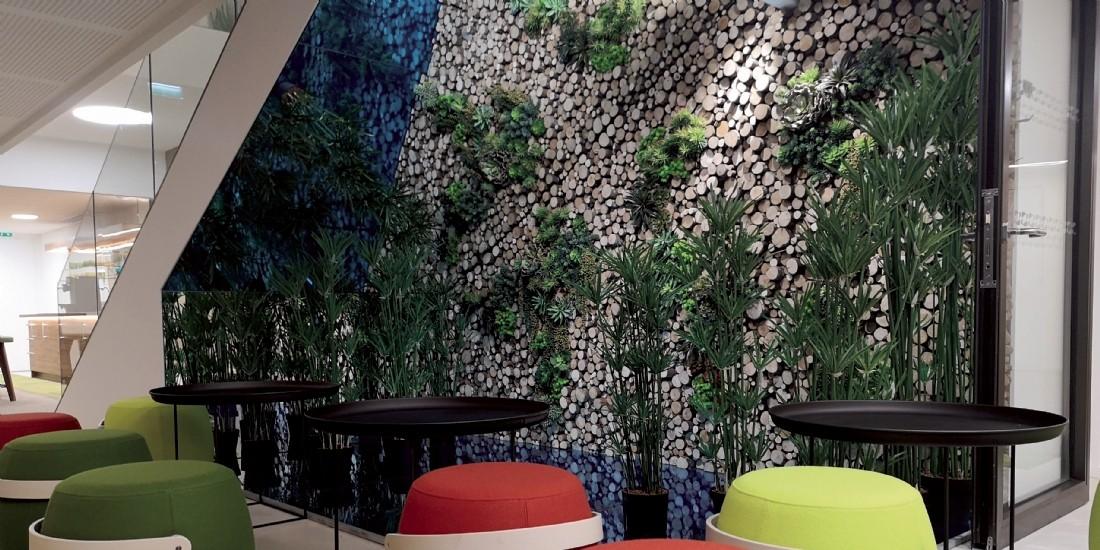 Du vert au bureau : optez pour une entreprise 'fertile'