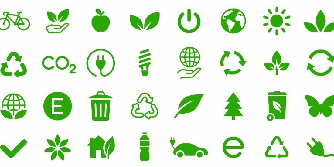 Comment l'Arbre Vert réduit son utilisation du plastique