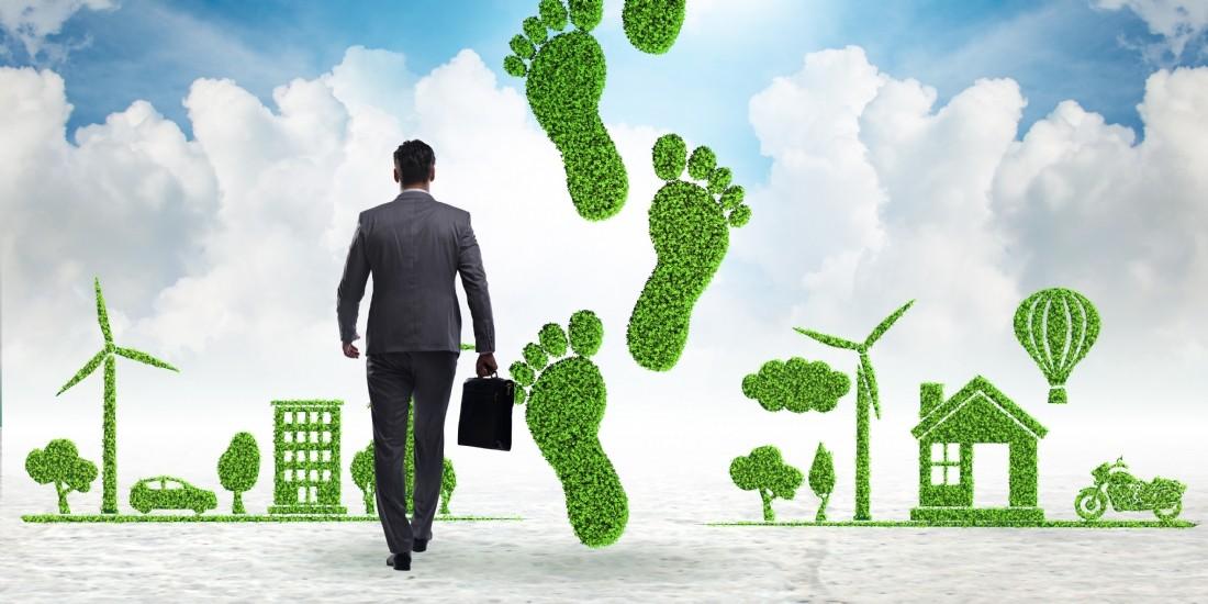 Comment Oodrive agit pour réduire son empreinte carbone