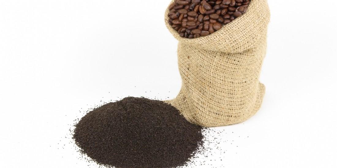 Nespresso Professionnel lance son premier café bio
