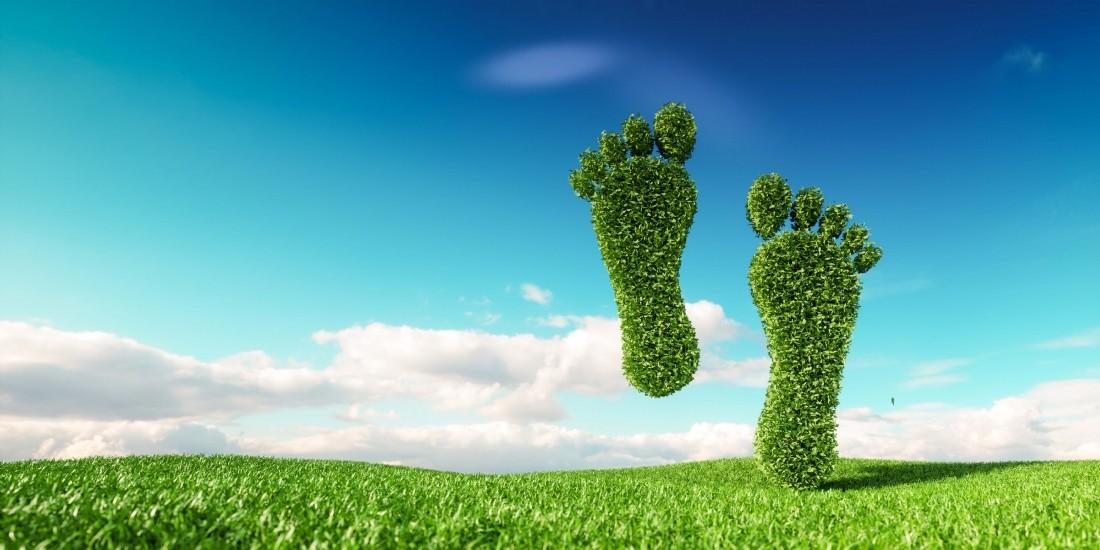 Zalando prévoit de réduire drastiquement son empreinte carbone
