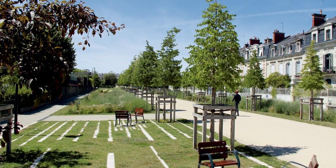 Les espaces verts : poumons des collectivités