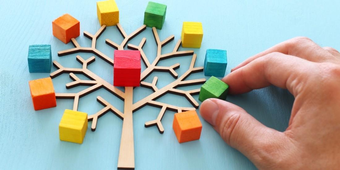 Société à mission : un nouveau modèle d'entreprise qui passe la barre des 100 membres