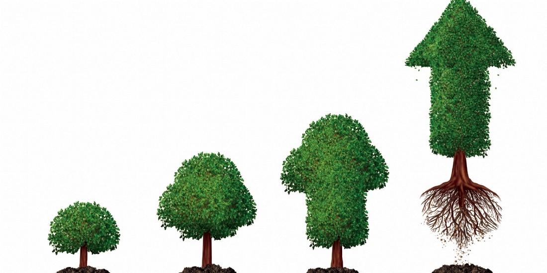 Les avantages économiques d'une chaîne d'approvisionnement durable