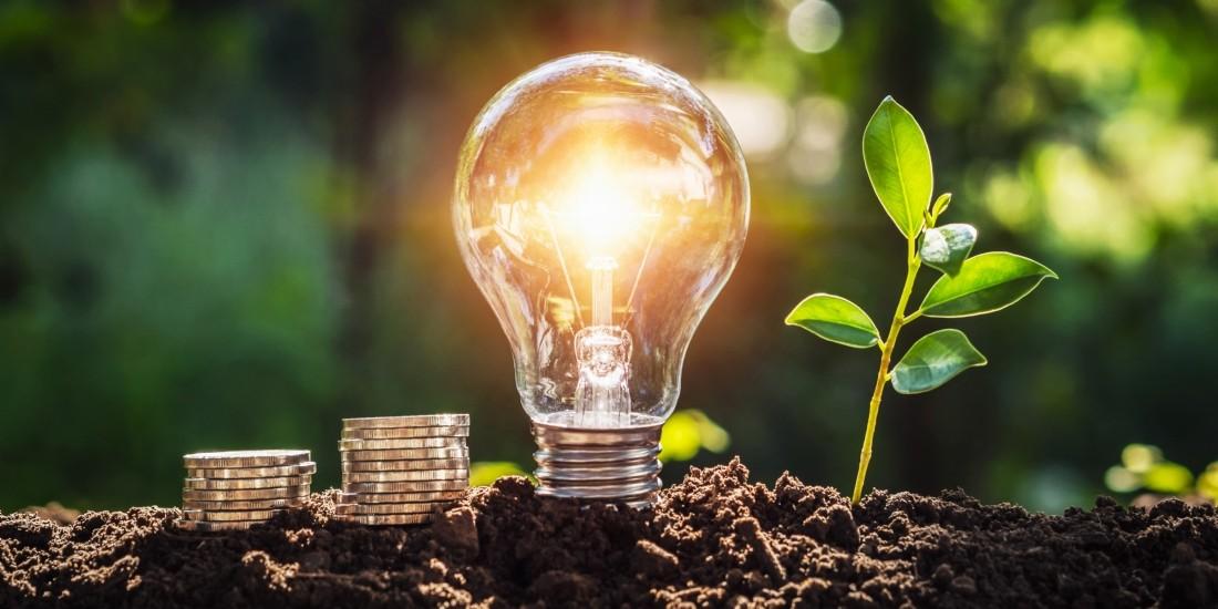 [Start-up sourcing] Planète OUI, gestionnaire d'énergie 100% verte