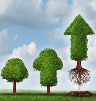 [Témoignage] Un ERP pour accompagner le développement d'une PME | Dossier : Mise en place d'un ERP: les do et les don't